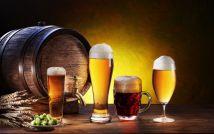 Пиво оригинальное чешское ZUBR светлое разливное